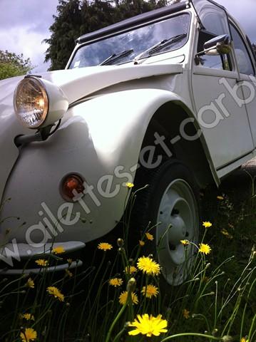 ailettes-et-carbus 2cv6 special E 8